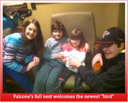 Falcone's Nest