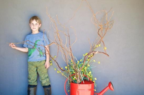 Fenton & a flower pot