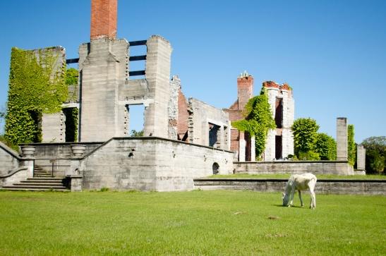 Cumberland white horse castle