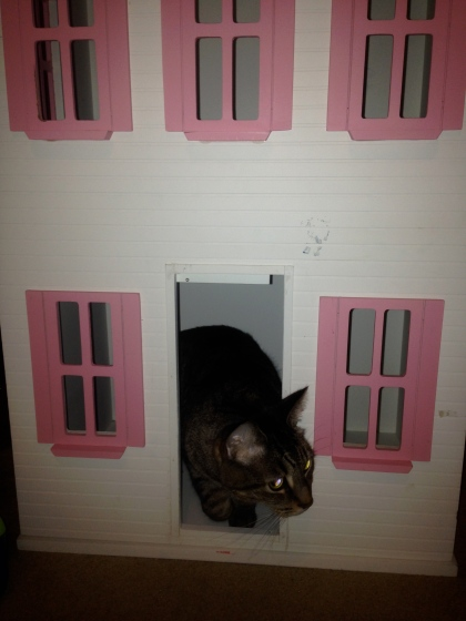 Barbie Cat House