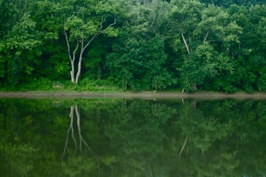 Susquehanna Reflections II