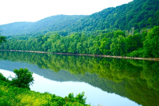 Susquehanna Reflections