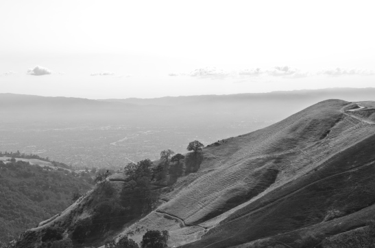 Santa Clara Valley B&W